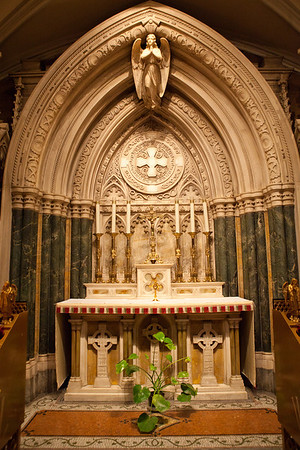 St  Patrick's Cathedral _9860