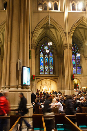 St  Patrick's Cathedral _9859