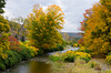 A small river in the Catskills of New York state with fall foliage color.