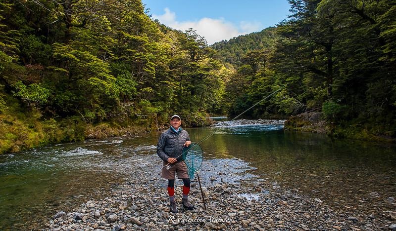 NZ 2016 best-1