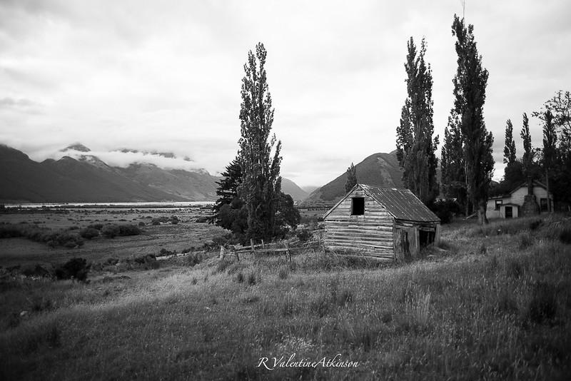 NZ 2016 best-41