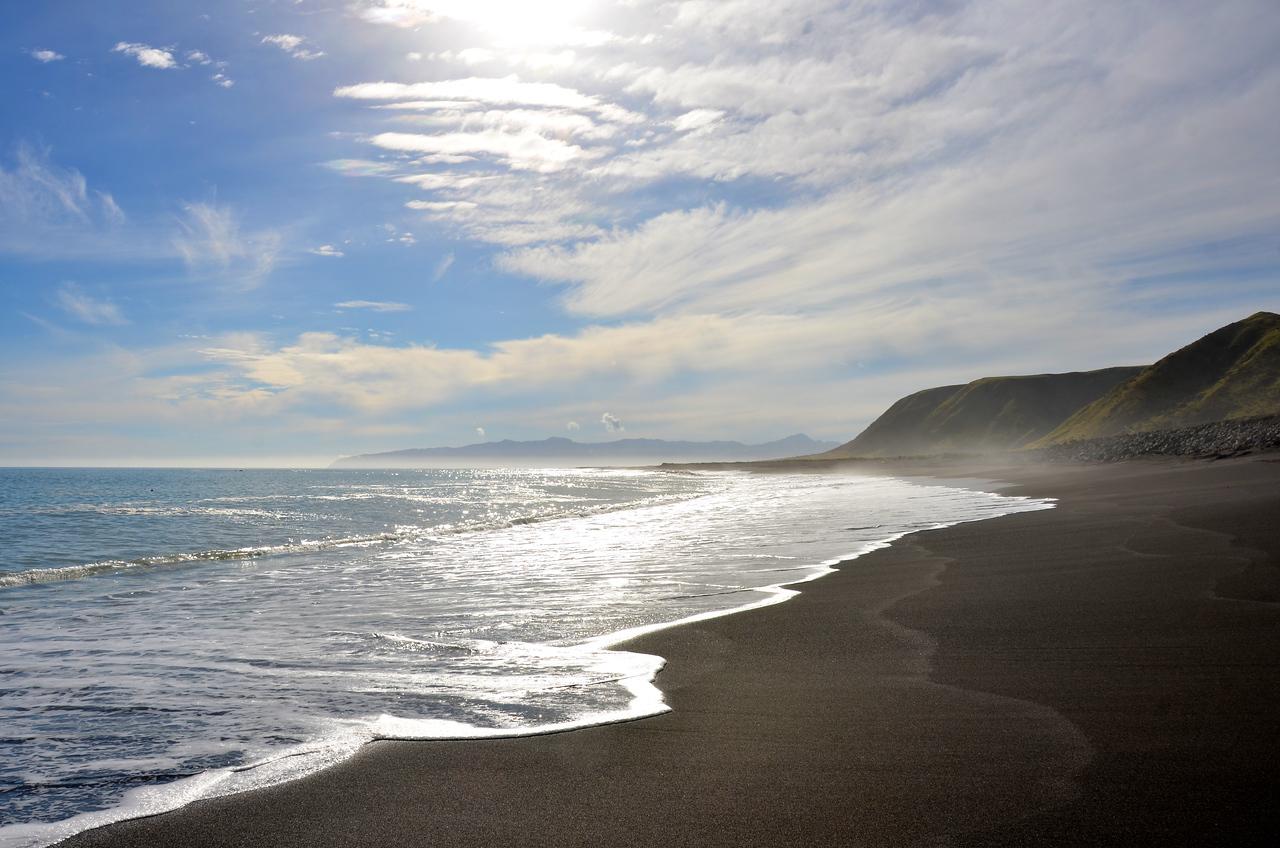 Cape Paliser Seals Waiarapa April 2012