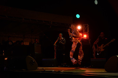 Dobet Gnahore (Ivory Coast) Womad New Plymouth