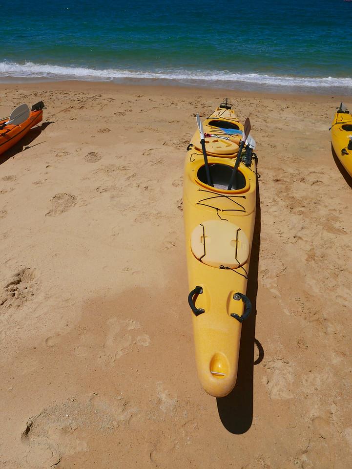 Abel Tasman Kayaking January 2016