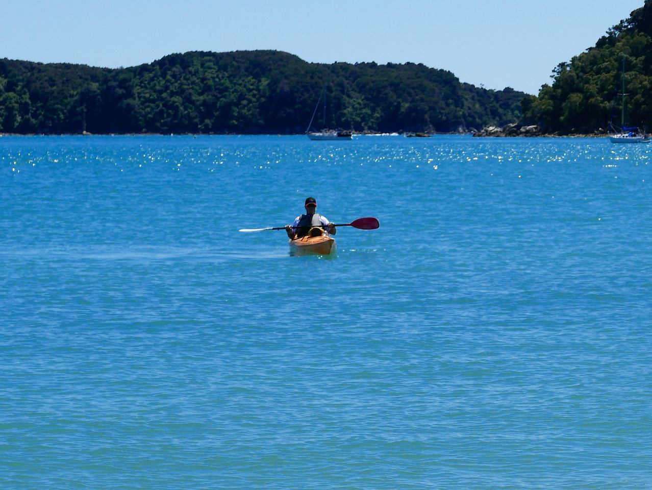 Robert Abel Tasman Kayaking January 2016
