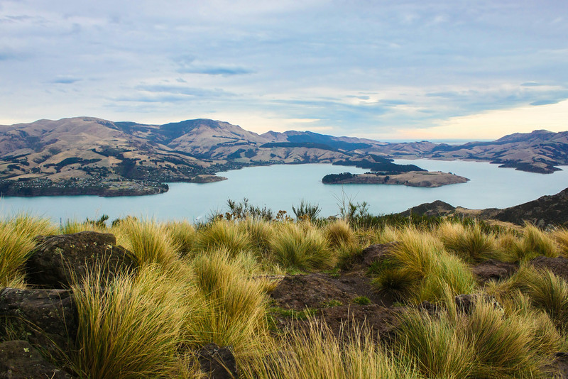 Atop the Mt. Pleasant Scenic Reserve via the Christchurch Gondola, Christchurch, New Zealand.