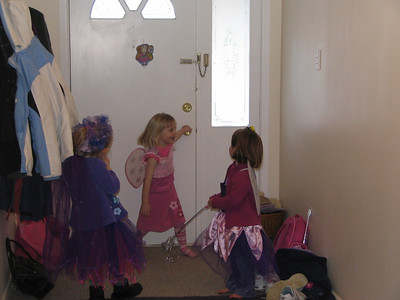 2005 Meg Emma Birthday Fairy Trina - 21