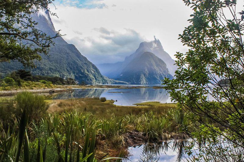 Milford Sound in Fiordland National Park, New Zealand.