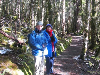 2006 Nelson Mt Arthur & Planting - 005
