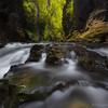 Ruakuri Canyon, Waitomo