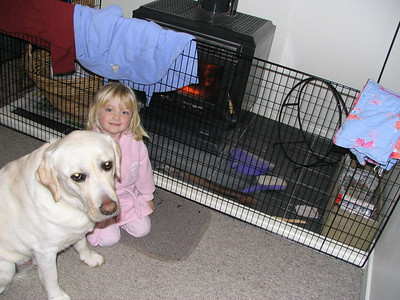 2004 Wellington - 001