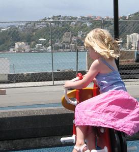 2006 Wellington - 013