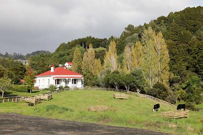 Brick Bay Vineyards, Matakana, New Zealand