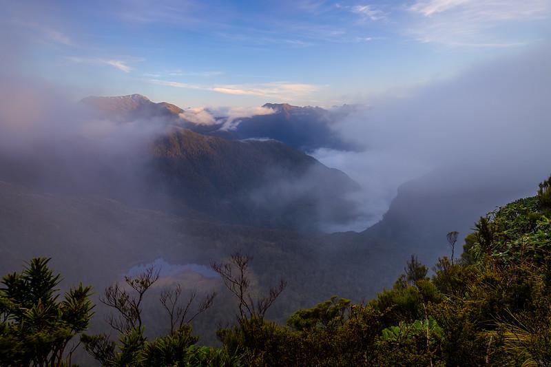 Foggy Fiord