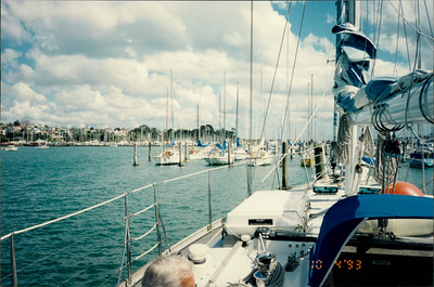 Auckland: Yacht Harbour - lunch cruise