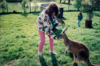 Phillip Island (working farm): eating out of JEE's hand