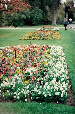 Christchurch: Botanic Gardens