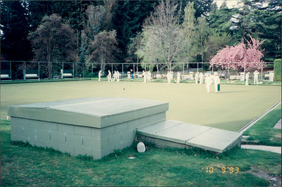 Queenstown: lawn bowling