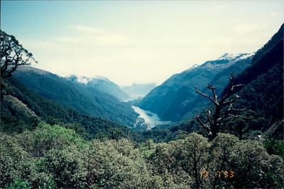 Doubtful Sound: Deep Cove
