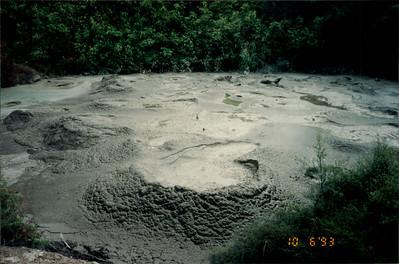 Rotorua: Whakarewarewa Thermal Village - spitting mud ponds in a Maori village (thermal areas are used for bathing, cooking, washing, heating)
