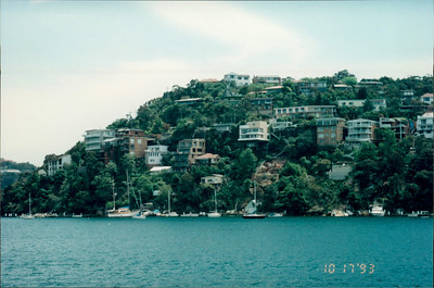 Sydney: morning tea cruise - homes built on hill and accessible only by water