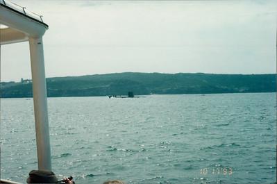 Sydney: morning tea cruise - submarine