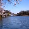 Beautiful Branch Brook Park in Newark, NJ