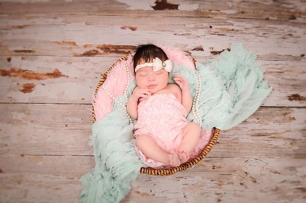 Newborn Girl Portfolio
