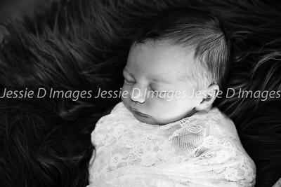Newborngirl-19