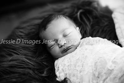 Newborngirl-14