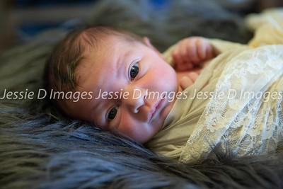 Newborngirl-10