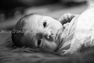 Newborngirl-6