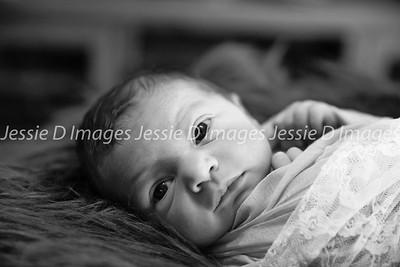Newborngirl-4