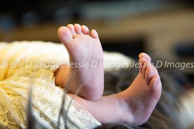 Newborngirl-8
