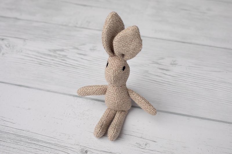 Oats Bunny
