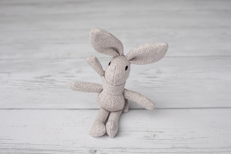 Ash Bunny