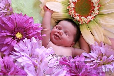 Ava's Newborn Portraits FP040110