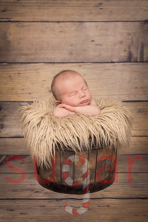 Max's Newborn Shoot