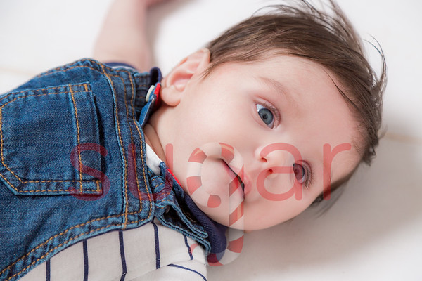 Olivers 4 Month Photoshoot