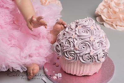 gorgous baby girls 1st cake smash, preston photographer, lancashire