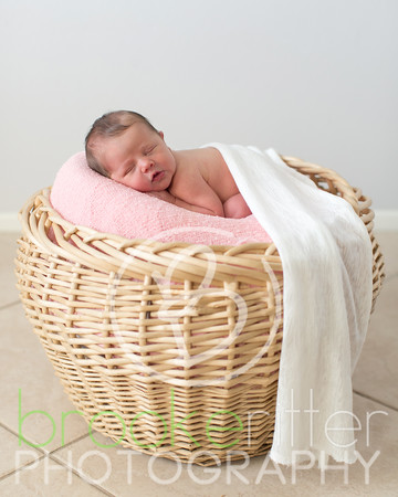 ARRamsey Newborn 2016
