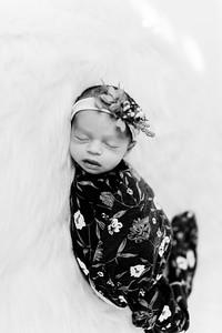 00281--©ADHPhotography2020--Miller--Newborn--January15bw