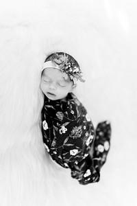 00286--©ADHPhotography2020--Miller--Newborn--January15bw