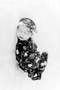 00287--©ADHPhotography2020--Miller--Newborn--January15bw