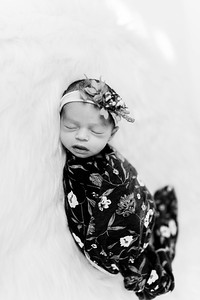 00282--©ADHPhotography2020--Miller--Newborn--January15bw