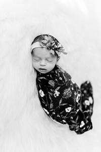 00284--©ADHPhotography2020--Miller--Newborn--January15bw