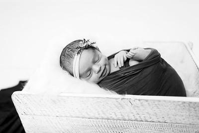 00011--©ADHPhotography2020--Miller--Newborn--January15bw