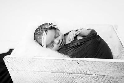 00012--©ADHPhotography2020--Miller--Newborn--January15bw