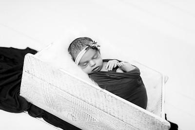 00008--©ADHPhotography2020--Miller--Newborn--January15bw