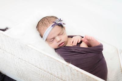 00004--©ADHPhotography2020--Miller--Newborn--January15